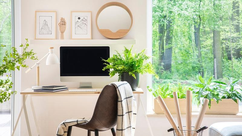 Workspace with nature